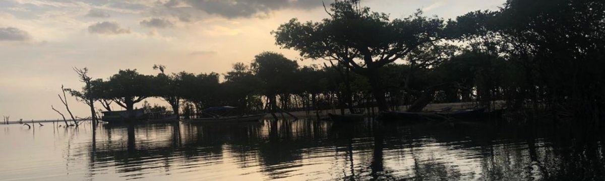Flona do Tapajós | Dia da Amazônia