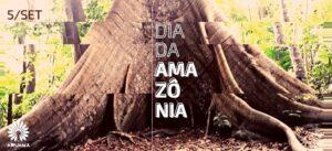 Samauma | Dia da Amazônia